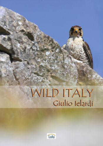 programmi tv seconda serata Wild Italy, oggi in tv seconda serata Wild Italy