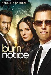 BURN NOTICE III