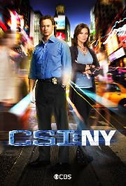 C.S.I. NEW YORK VIII